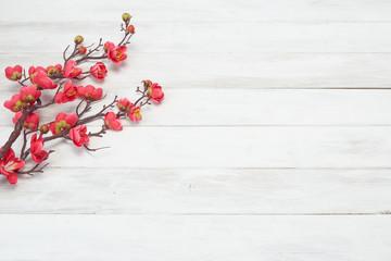 Plum Flowers Blossom on white wood plank