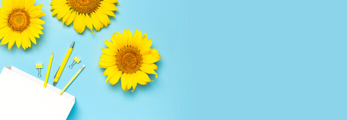 Top view flat lay of workspace desk styled design with sunflowers, white paper bag pencils pen notebook diary paper clips on blue background. Education concept Stationery. Sunflower natural background