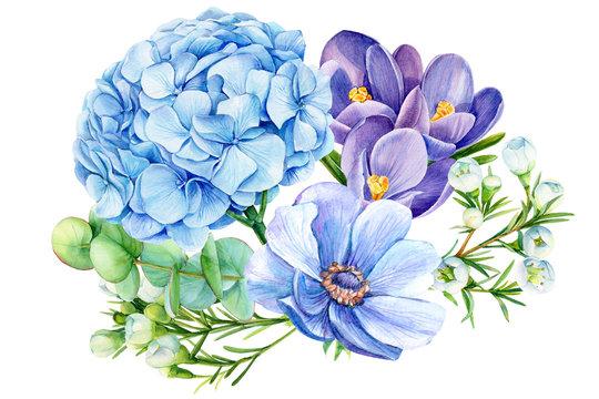bouquet of blue flowers, hydrangeas, crocuses, eucalyptus, anemone,  watercolor illustration