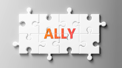 Ally complex like a puzzle - pictured as word Ally on a puzzle pieces to show that Ally can be difficult and needs cooperating pieces that fit together, 3d illustration