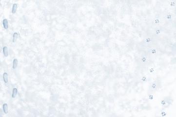 雪の上の散歩 靴跡と犬の足跡のバックグラウンド