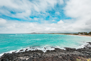 Galapagos Islands Dream beach on the island of Isabela with turquoise-blue waters and Caribbean sand beach which is fringed with palm trees and black lava rocks, in the travel destination of Ecuador