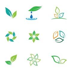 Leaf symbol vector icon