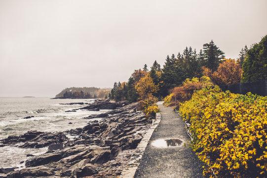 Bar Harbor Maine Coast during Fall