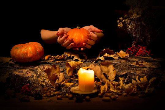 Forest witch makes some spell on the altar. Female hands with sharp red nails among candles, pumpkin, nuts, dry leaves, herbs, acorns, ashberry, selected focus, low key