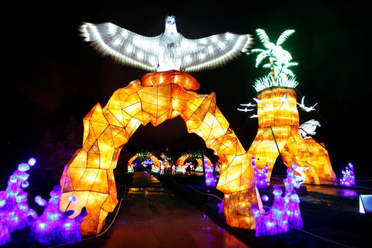 """Brightly coloured animal-shaped figures are on display during the """"Ocean en voie d'illumination"""" exhibition at the Jardin des Plantes (Botanical garden) in Paris"""