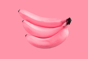 Fototapeta Pink unreal bananas on pink background, crazy concept  obraz