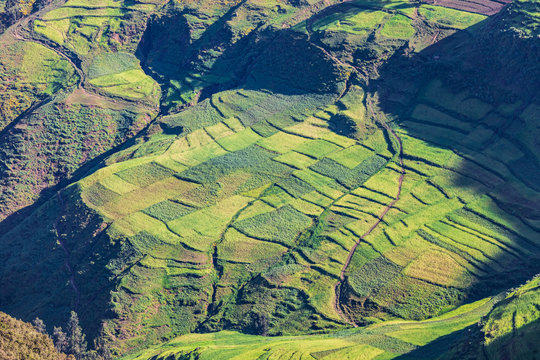 Farm fields in the Ethiopian highlands