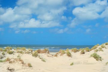 Landscape empty beach with dunes