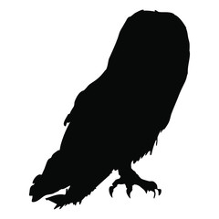 Isolated vector illustration. Silhouette of a barn owl.