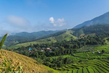 Papiers peints Les champs de riz Terraced rice fields village