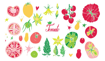 Set of isolated tomato vector elements on white background