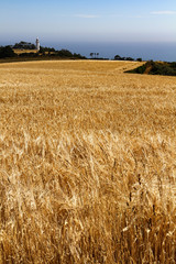 Landscape with Wheat Field, lighthouse and blue sky