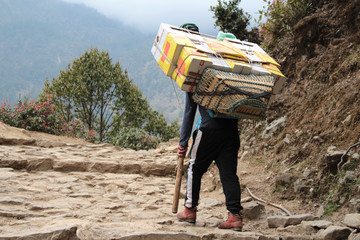 Nepalese sherpa porter carries boxes with food, drinks and other stuff on the Lukla - Everest Base Camp Trekking Route in Himalayas in Nepal. A man holds a wooden stick in his hand.