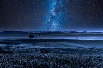 Papiers peints Bleu nuit Milky way over filed with one tree at night