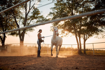 Young woman training her horse