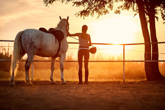 Female horse rider in a company of her horse