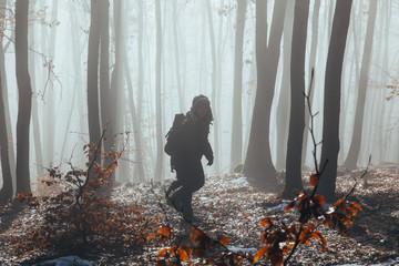 Misty forest with dense fog.