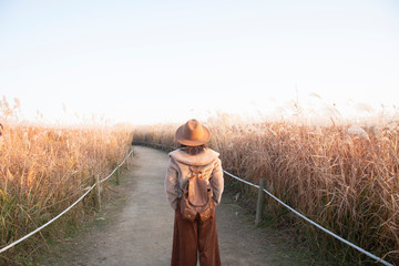 Woman is enjoy traveling at famous Park in South Korea during Autumn.