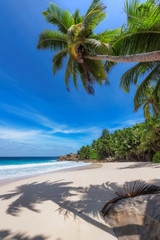 Sunny tropical beach background. Summer vacation and tropical beach concept.