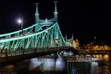 Budapest, Ungheria, ponte della libertà, di notte