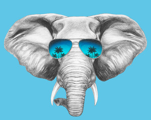 Portrait of Elephant with sunglasses. Hand-drawn illustration. Vector isolated elements.