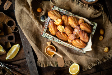 french shell shaped biscuit dessert madeleine in wooden box