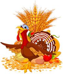 Foto op Canvas Sprookjeswereld Cute Turkey