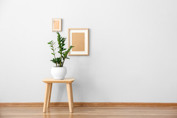 Houseplant on table near white wall in room
