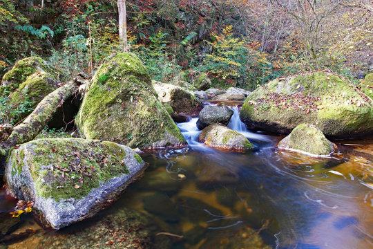 Herbstlicher Pesenbach im Mühlviertel - Österreich