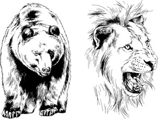 set of vector drawings of various animals, predators and herbivores, hand-drawn sketches, tattoos