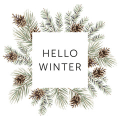 Christmas nature design square frame, text Hello Winter, white background. Green pine, fir twigs, cones. Vector illustration. Greeting card, poster template. Xmas holidays