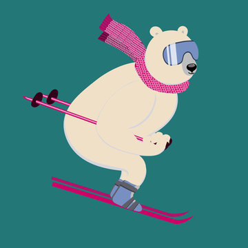 Polar bear on an alpine ski slope. Сharming sporty and strong animal wears scarf and ski goggles, likes downhill skiing.  Vector ilustration with character in flat style. Can be used as mascot