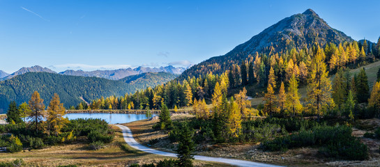 Wall Murals Road in forest Peaceful autumn Alps mountain view. Reiteralm, Steiermark, Austria.