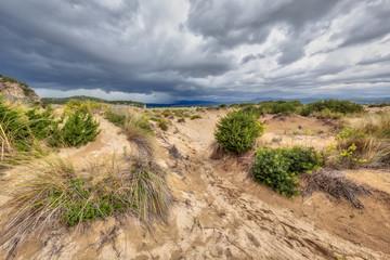 Wall Mural - Dune vegetation Voidokilia beach storm
