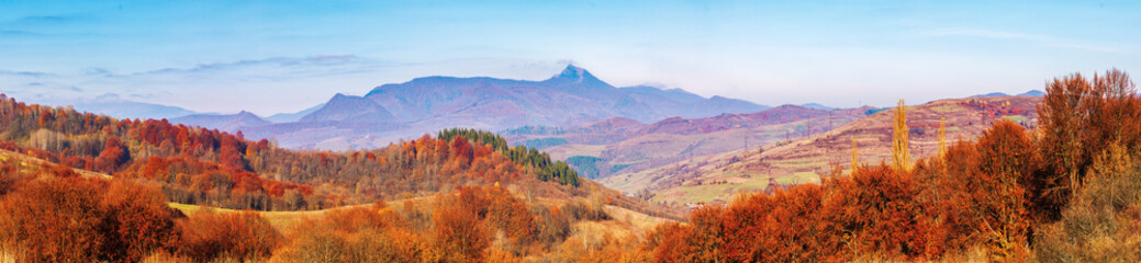 forest with red foliage on hills in autumnal countryside. panoramic view of mountainous area with gorgeous high peak pikui of watershed mountain ridge in a distance. trancarpathia, ukraine