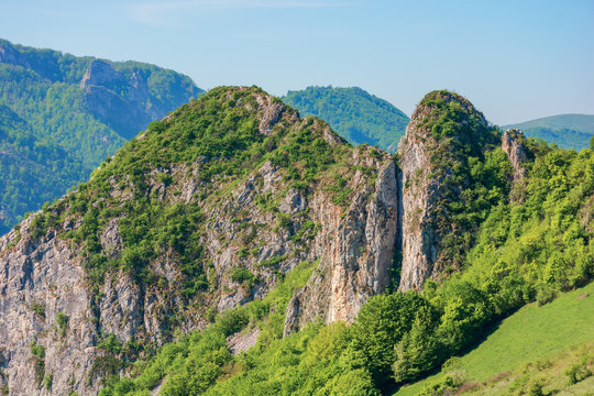 beautiful mountain landscape. sunny springtime scenery with cliffs of Cheile Manastirii in alba country of romania