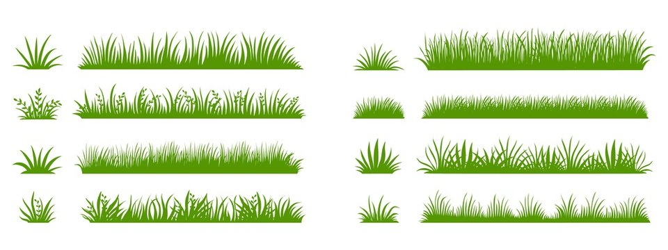 Green grass silhouette. Cartoon lines of plants and shrubs for boarding and framing, eco and organic logo element. Vector set spring bio field banner or fresh organic pasture