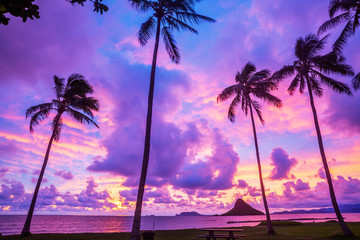 sunrise at chinaman's hat in Oahu, Hawaii