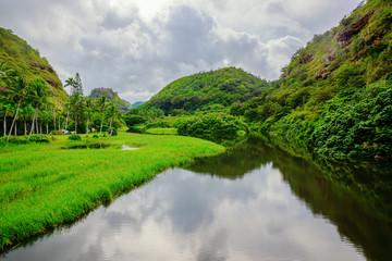 entrance view of Waimea valley, Oahu, Hawaii