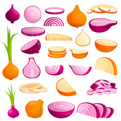 Onion icons set. Cartoon set of onion vector icons for web design