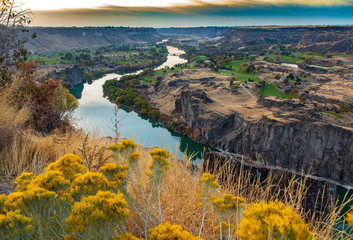 Snake river with wild flowers at sunset in Twin Falls Idaho