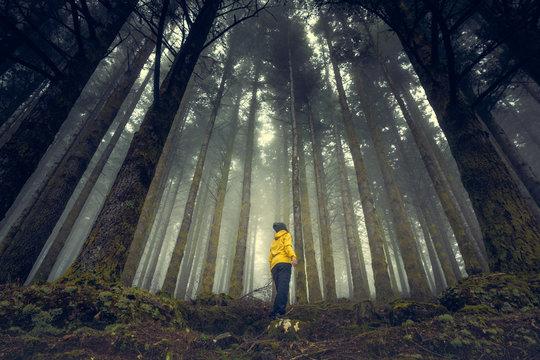 Enjoying the forest