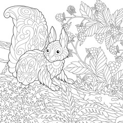 coloring page with cute squirrel in the forest