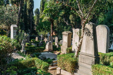 Non catholic cemetery for foreigners in Rome, Italy. One of most beautiful and little known places in city. Wall mural