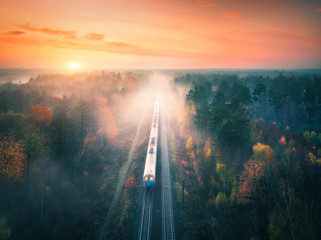 Train in colorful forest in fog at sunset in autumn. Aerial view