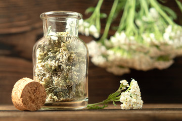 Concept of homeopathy and herbal treatment - dried achillea millefolium know as yarrow in a bottle