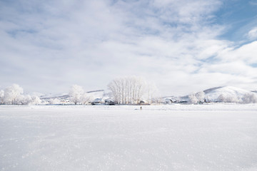 Winter landscape of russian countryside; high trees, house roofs in frost; snowy mountains and hills on background; dog standing in the middle, frozen lake on foreground; white picture with cloudy sky