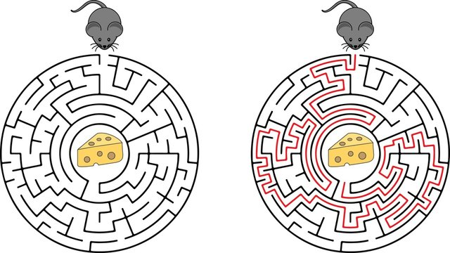 Cartoon Vector Illustration of Education Maze or Labyrinth Game for Preschool Children with Funny Mouse and Cheese