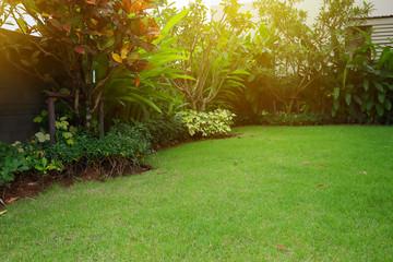 Fotorolgordijn Tuin lawn landscaping with green grass turf in garden home